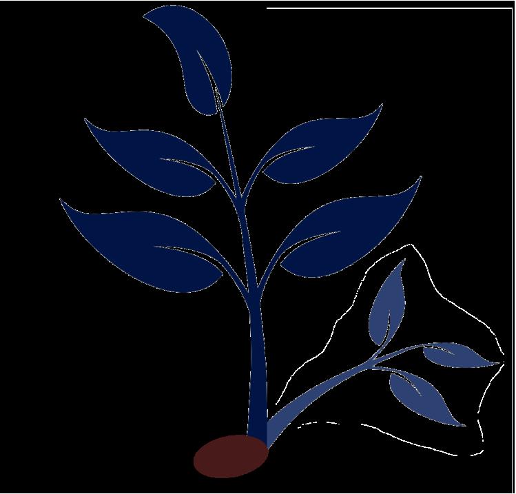 Logo-Solange-Delageniere